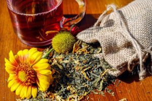 Herbal consulation at Zest Acupuncture and Wellness High Peak London